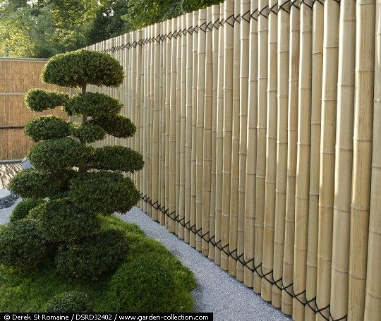 Bamboo fence, I love this in combination with the gravel, and the black cable or r...