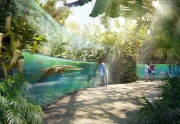 """With wire fences, with 'immersion landscapes"""": the revolution in the zoo ..."""